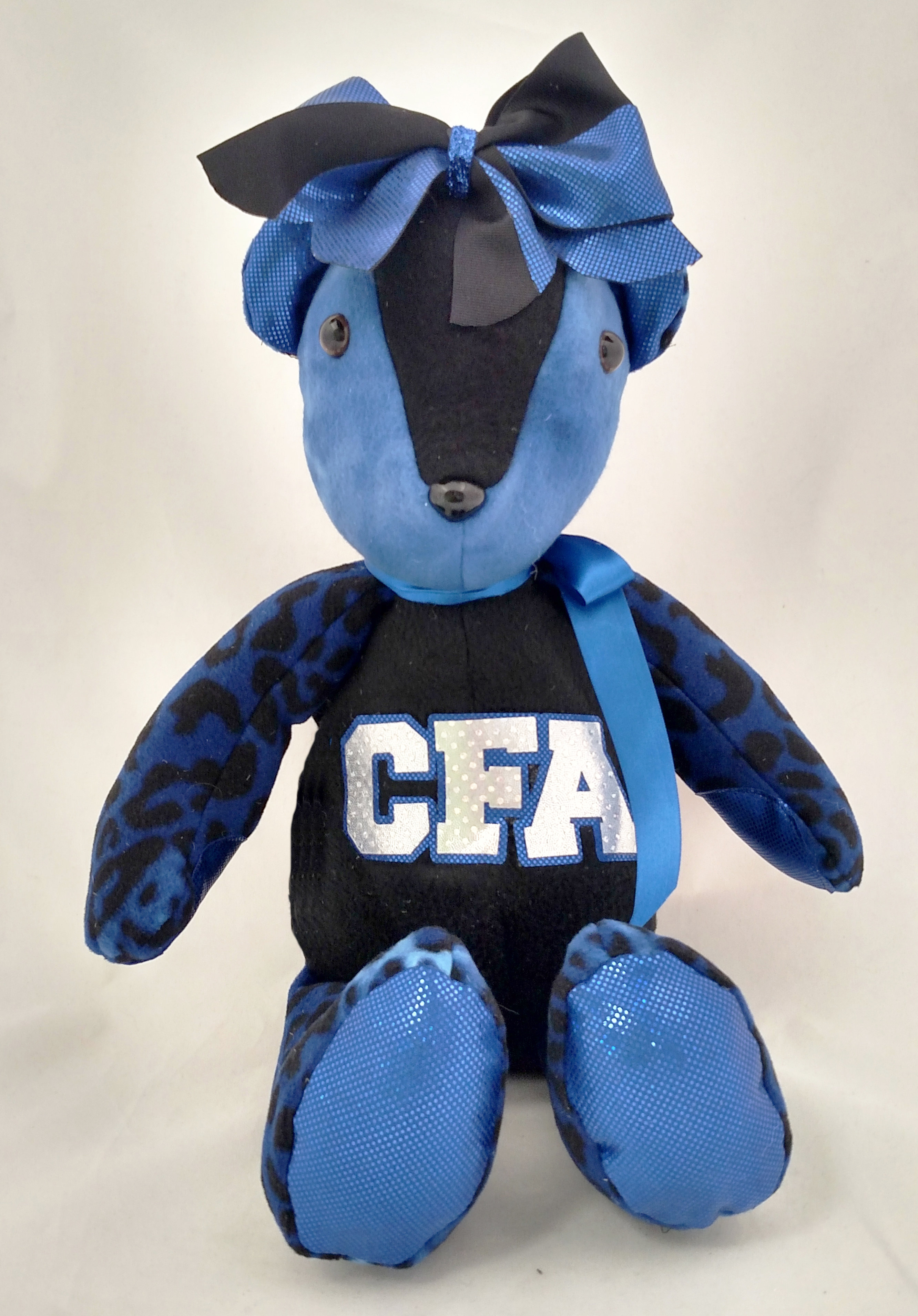 Central Florida All Stars - Spirit Bear TB-SP-CFA