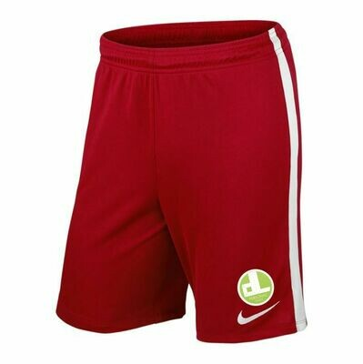 Nike Spielershort  Home Kinder SV Lichtenberg 47 Fan