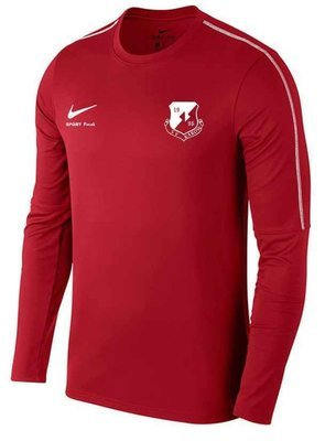 Nike Park 18 Sweat Shirt Kinder SV Karow 96