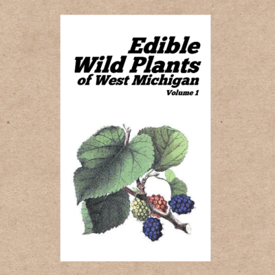 Edible Wild Plants zine for West Michigan (Midwest & Eastern United States)