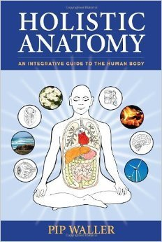 Holistic Anatomy: An Integrative Guide to the Human Body 00021
