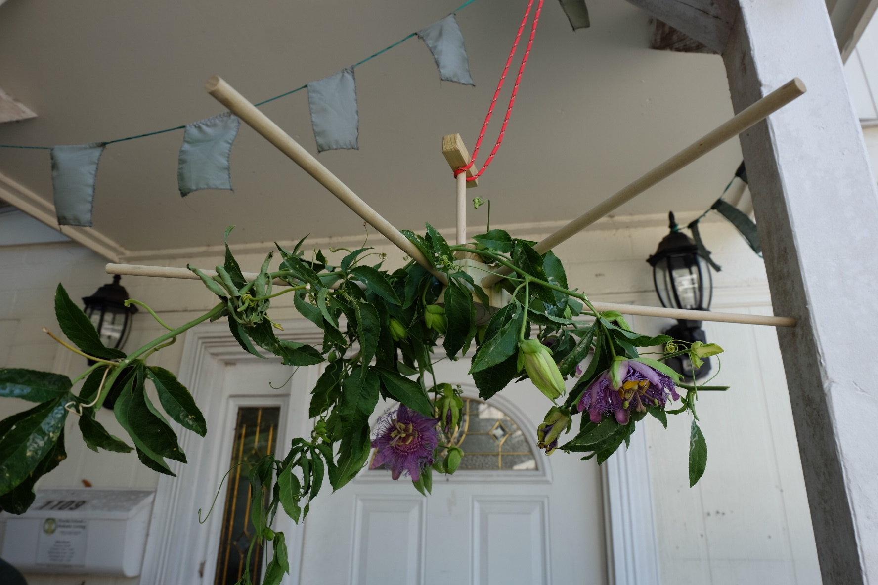 Herb Drying Rack 00025