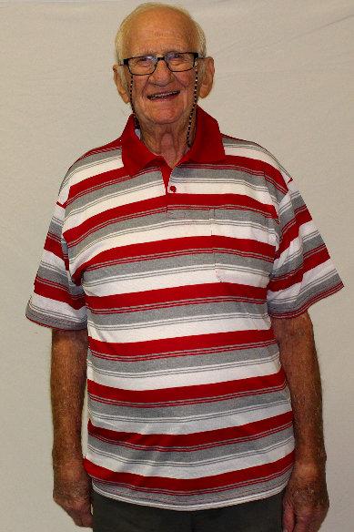 Striped Short Sleeve Pullover Shirt