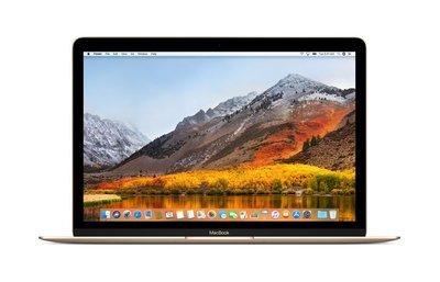 MacBook 12-inch (Mid 2017) Gold