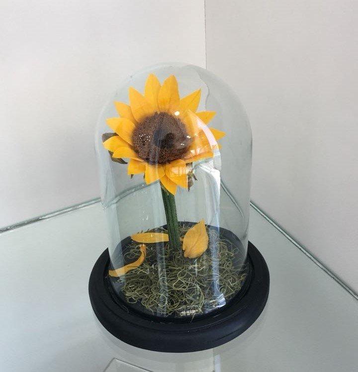 Mini domo girasol