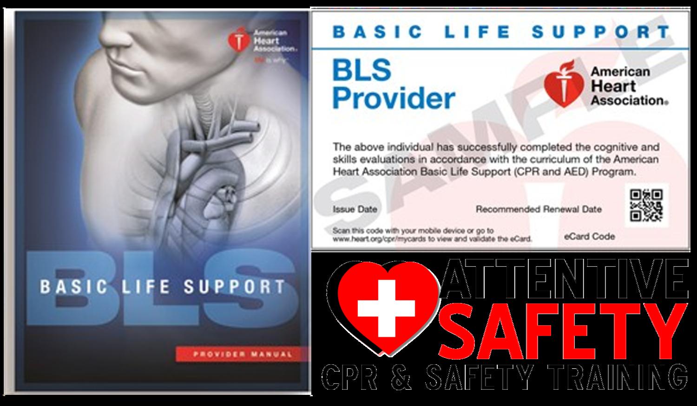 Provider skills session bls provider skills session 1betcityfo Images