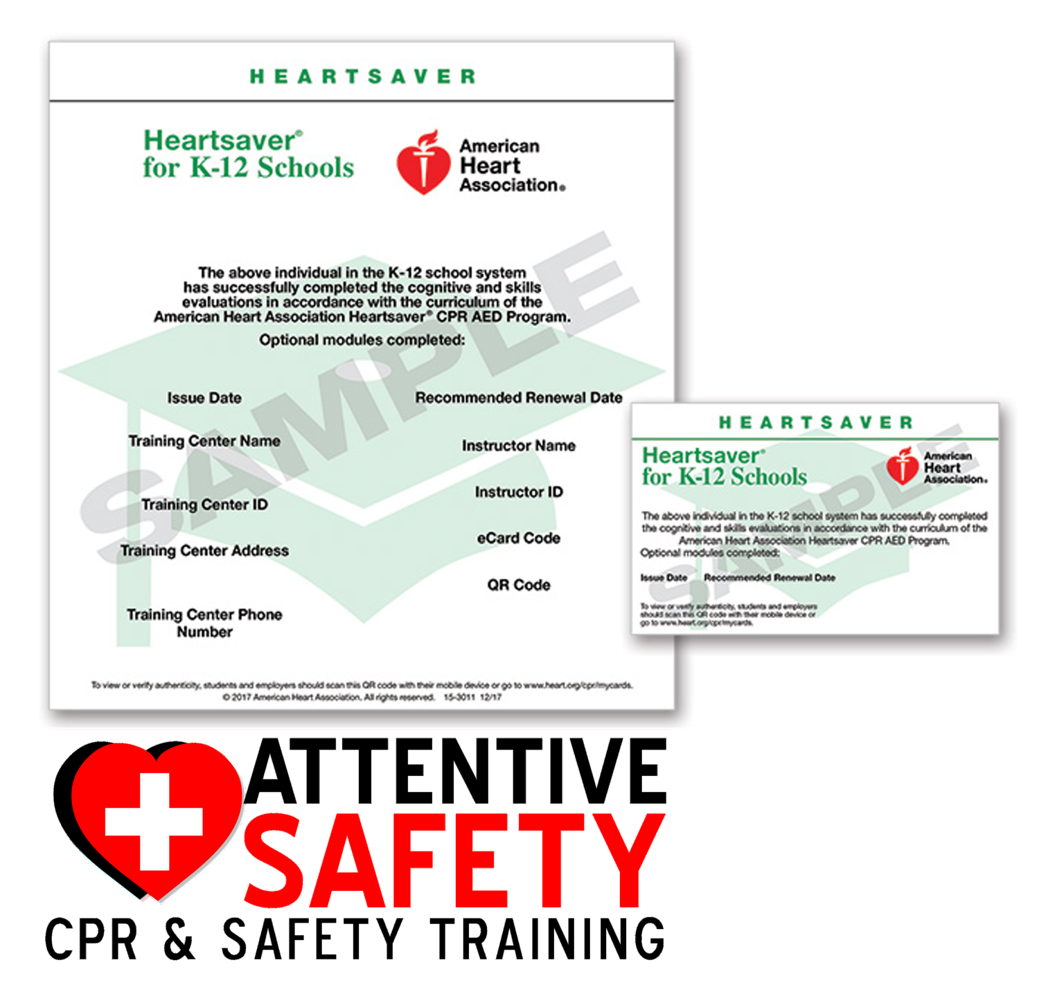 First aid cpr aed for k 12 school staff heartsaver first aid cpr aed for k 12 school staff 1betcityfo Images