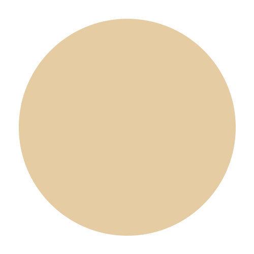 Warm Sienna - Medium Light with strong gold undertones - SPF 20