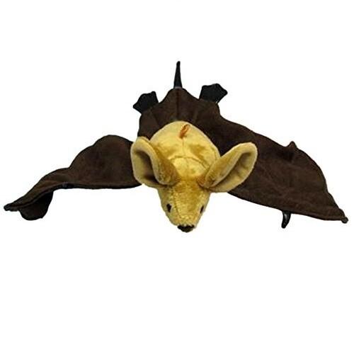 Cute Brown Bat