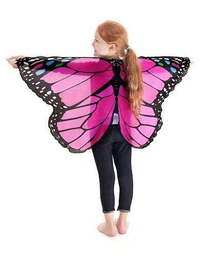 Dress Up Butterfly Wings