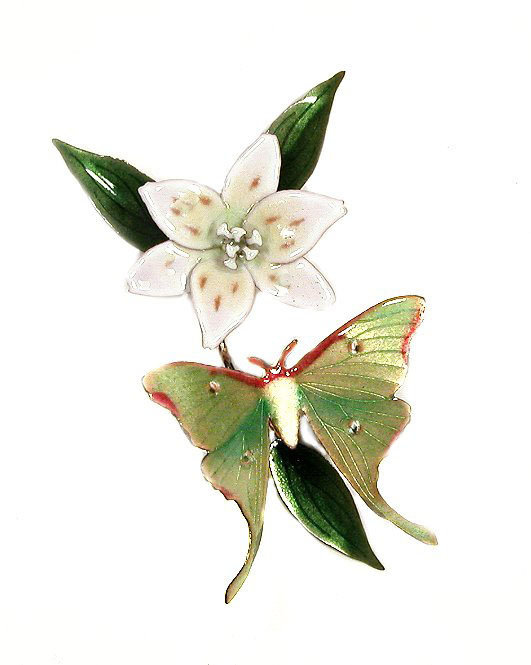 Bovano - Luna Moth