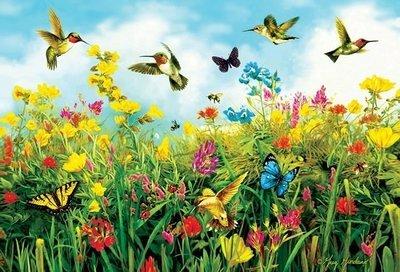 Puzzle - Hummingbird Fields