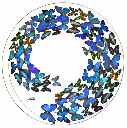 "33 - 36"" Circle Butterfly Display"
