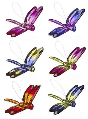 Acrylic Rainbow Dragonfly