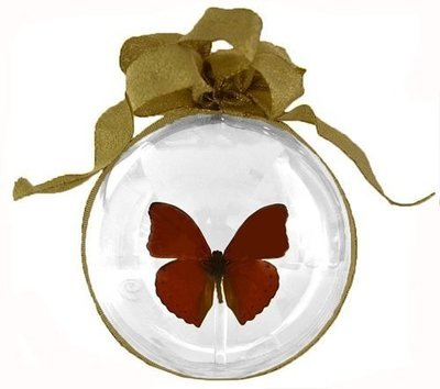 33 - Small Butterfly Ornament