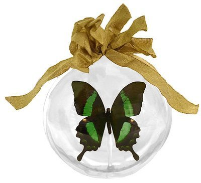 34 - Large Butterfly Ornament
