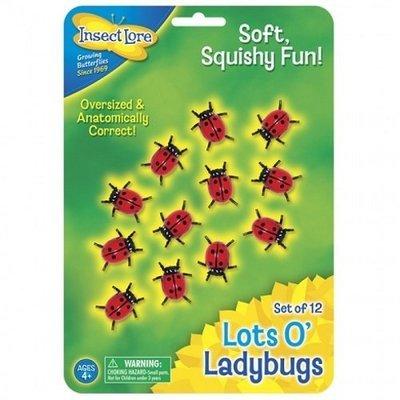 Lots O Ladybugs