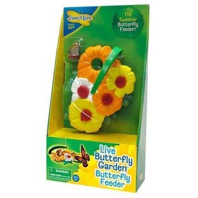 Feeder - Butterfly