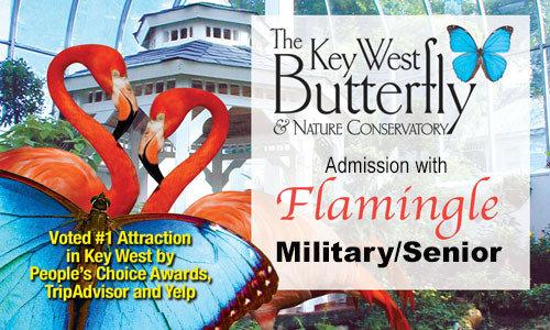 Flamingle - Conservatory Admission (Military/Senior 65+)