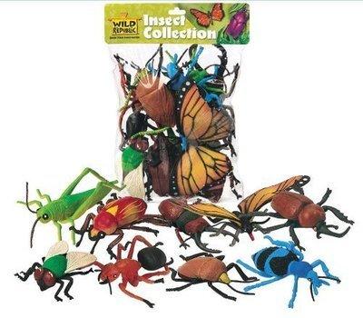 Big Bag of Bugs or Lizards