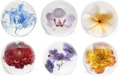 Flora Culture Paperweight