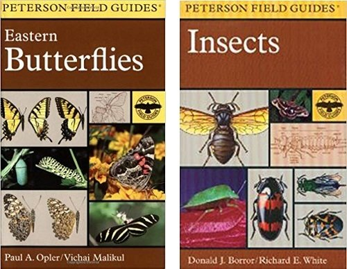 Book - Peterson Field Guide Butterflies or Insect
