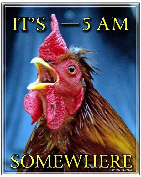 IT'S 5 AM SOMEWHERE * 8'' x 11''