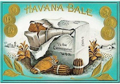 HAVANA BALE * 8'' x 11''