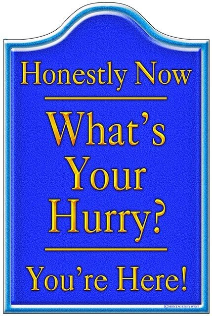HONESTLY NOW BLUE * 6'' x 11'' 10205