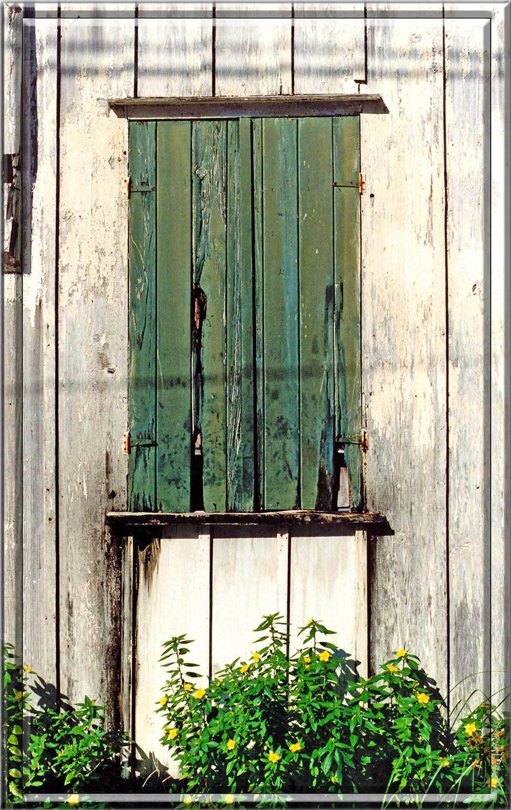 GREEN SHUTTERS WITH FLOWERS * 6'' x 11'' 10293