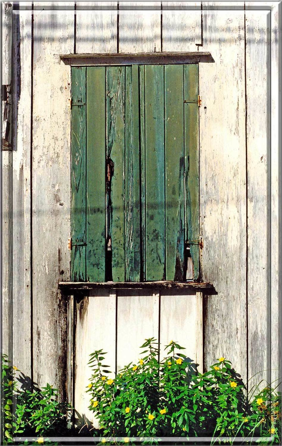 GREEN SHUTTERS WITH FLOWERS * 6'' x 11''