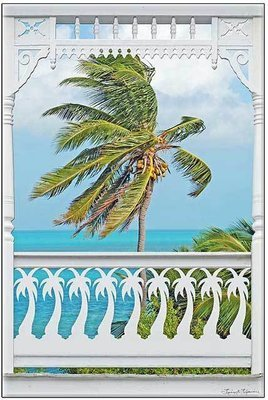 PALM PORCH * 7'' x 11''