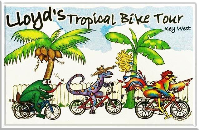 LLOYD'S BIKE TOURS * 6'' x 11'' 10400