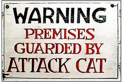 ATTACK CAT * 7'' x 11''