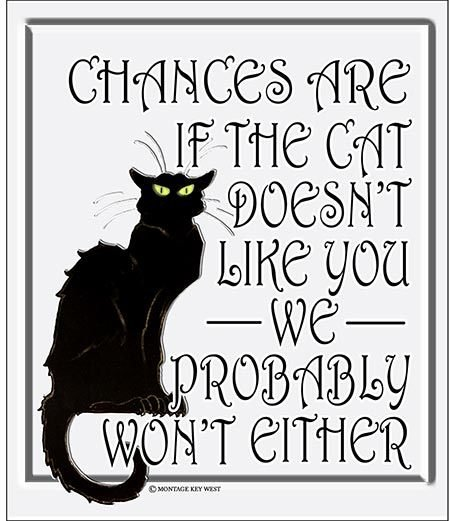 IF CAT DOES'NT LIKE YOU * 8'' x 10'' 10524