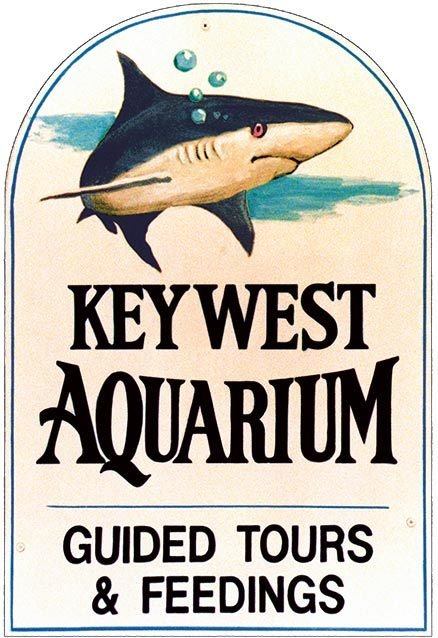 KEY WEST AQUARIUM SHARK * 7'' x 11'' 10531