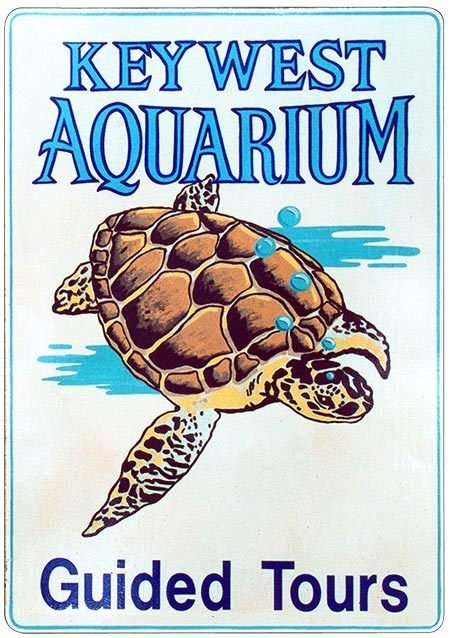 KEY WEST AQUARIUM TURTLE * 7'' x 11'' 10532