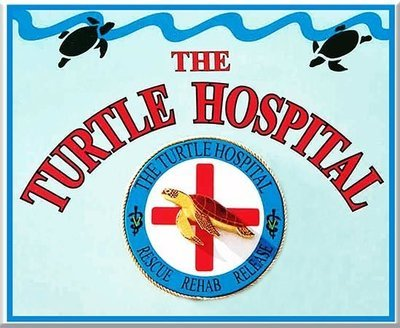 TURTLE HOSPITAL * 8'' x 11''