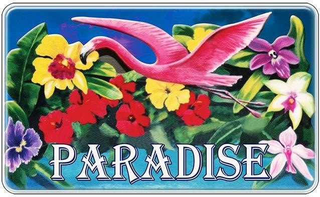 PARADISE FLOWERS * 6'' x 11'' 10565