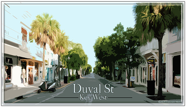 DUVAL ST STREET VIEW * 6'' x 11'' 10612
