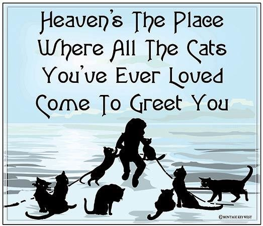 "HEAVEN'S THE PLACE WHERE CATS * 8"" x 10"" 10660"