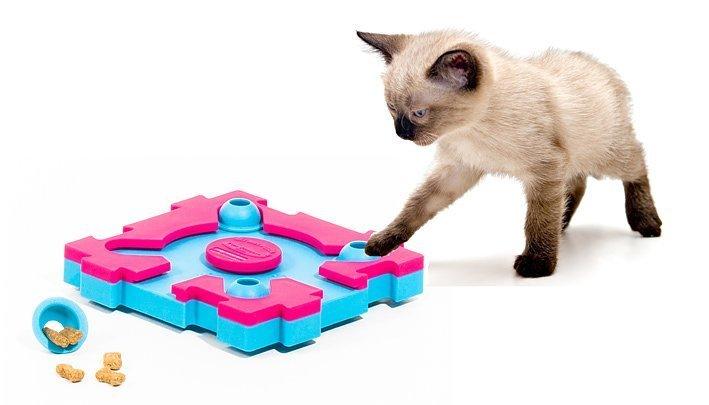 Интеллектуальная игра для кошек легкий уровень