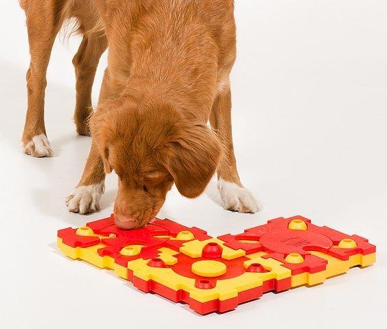 Пазл для собак средний уровень