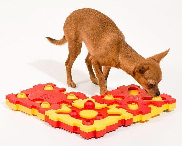 Пазл для собак сложный уровень