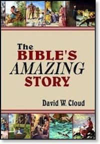 Bible's Amazing Story, The