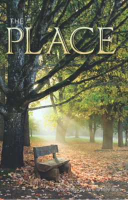 SP -The Place - 365-day daily devotional with nuggets