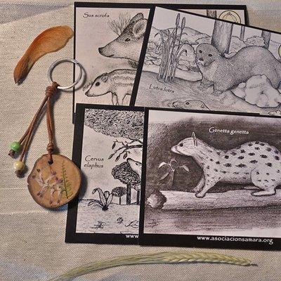 Llavero de madera y postales ilustradas de fauna