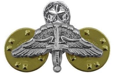bdg/ Master HALO Wings - Mirror Finish (Mini-Badge)