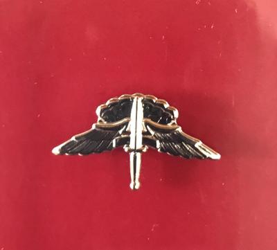 bdg/ Freefall Jump Wings - Mirror Finish (Mini-Badge)
