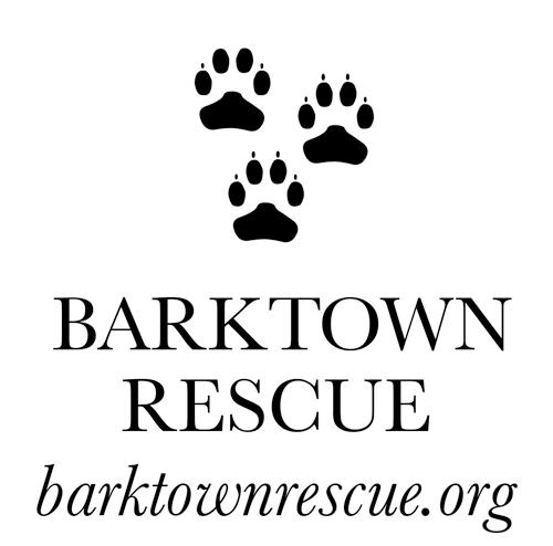 Barktown Rescue Online Store